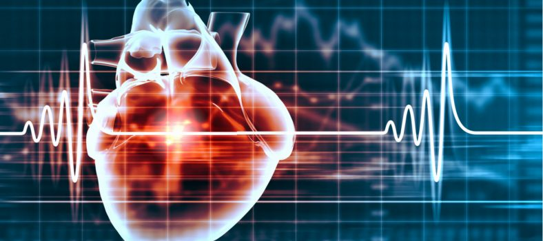 Featured image BRC-funded researcher investigates long term effects of COVID-19 on the heart