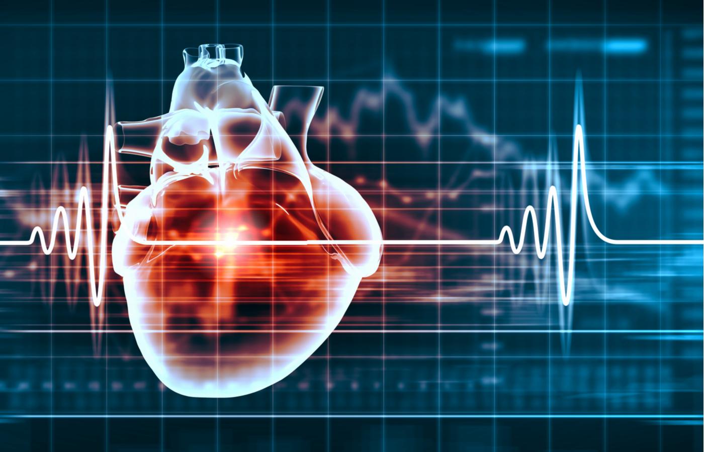virtual image of a human heart